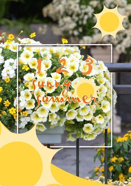 1, 2, 3, Sunny Summer