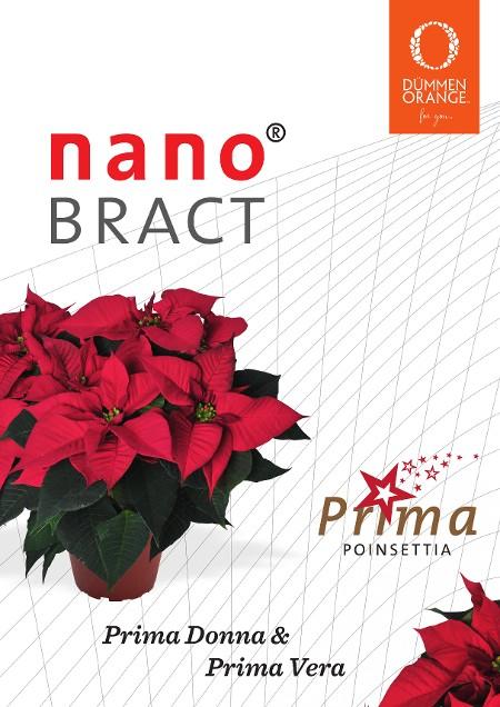 NanoBract