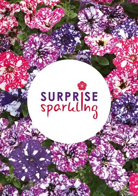 Surprise Sparkling